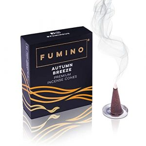 Fumino® Autumn Breeze Fresh Incense Cones 20 per Box Masala Agarbatti Joss Smoke Scent Fragrance for Relaxation, Meditation, Stress and Anxiety Relief Home and House Decor