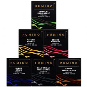 Fumino® Fresh Incense Cones Bundle 6 Boxes 120 Cones Masala Agarbatti Joss Smoke Scent Fragrance for Relaxation, Meditation, Stress and Anxiety Relief Home and House Decor