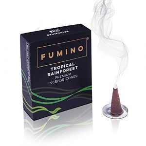 Fumino® Tropical Rainforest Fresh Incense Cones 20 per Box Masala Agarbatti Joss Smoke Scent Fragrance for Relaxation, Meditation, Stress and Anxiety Relief Home and House Decor