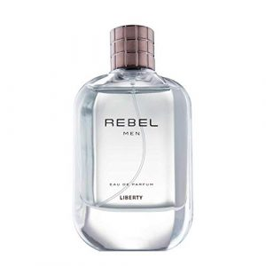 Liberty LUXURY Rebel Perfume (100ml) for Men, Long Lasting Smell, Crafted in France, Eau de Parfum(EDP) - (Rebel)